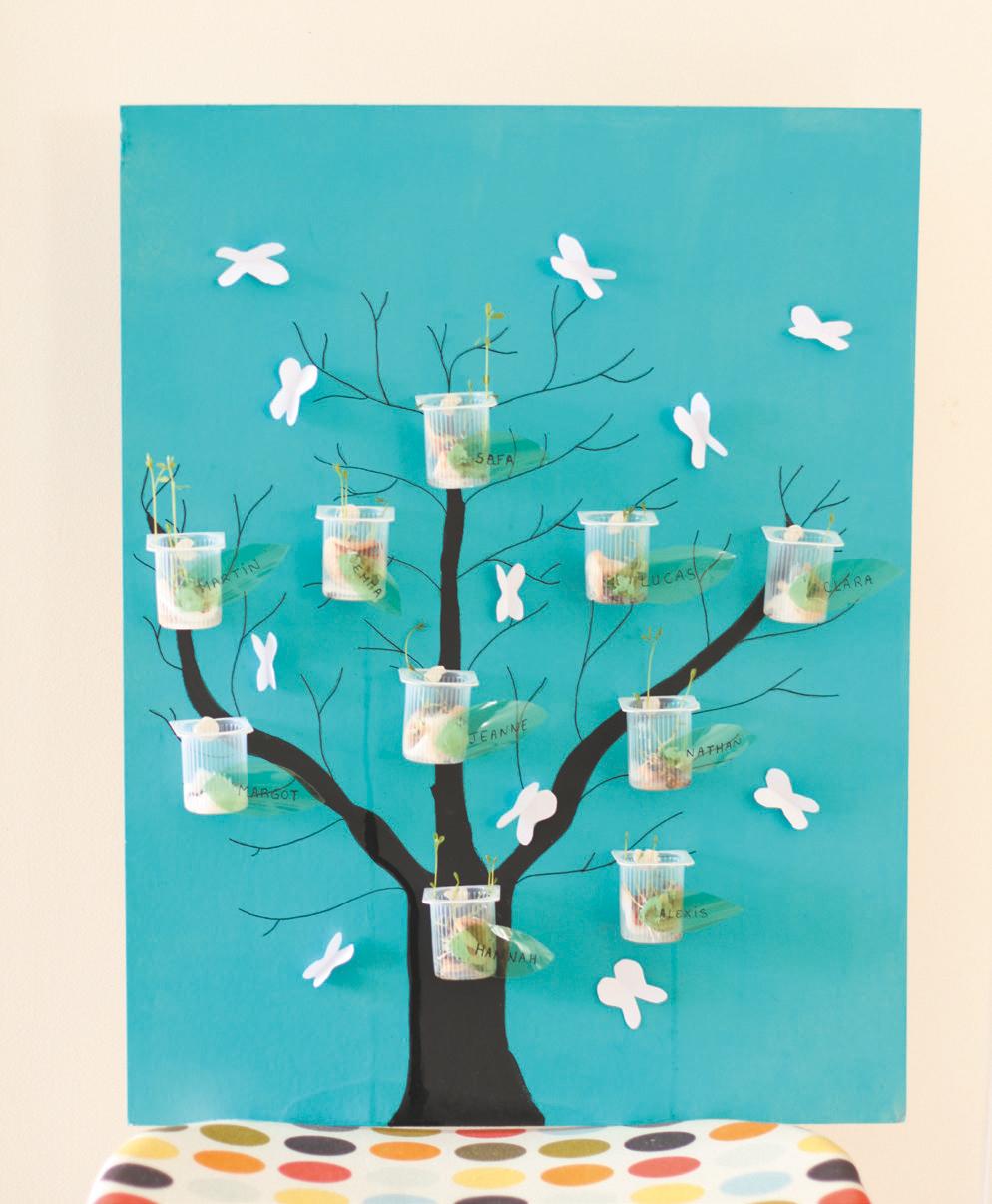 Fiche cr ative n 2 l arbre qui pousse le blog savoirsplus for L arbre qui pousse le plus vite