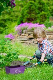 mini-jardiniere-25-cm