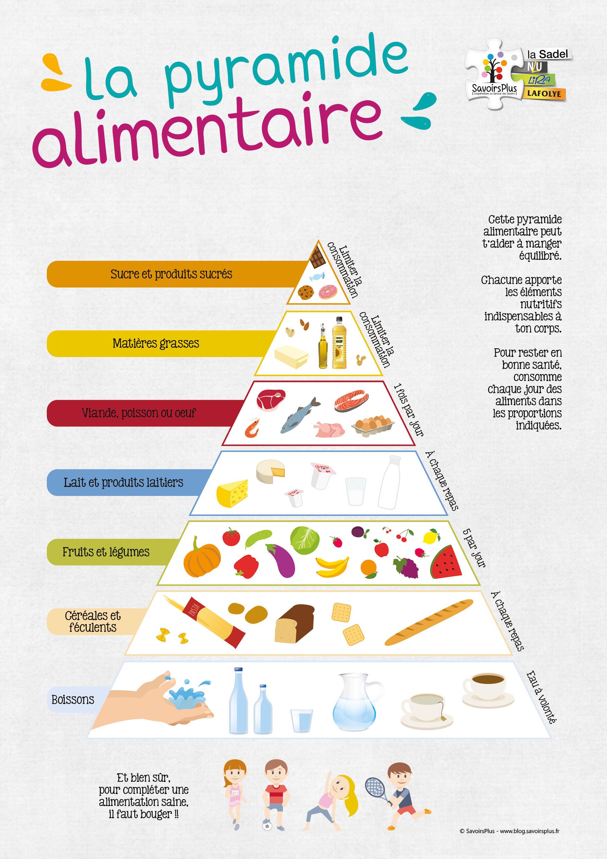 Téléchargement – La pyramide alimentaire – Le blog SavoirsPlus
