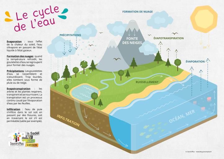 Cycle de l'eau_Savoirs plus