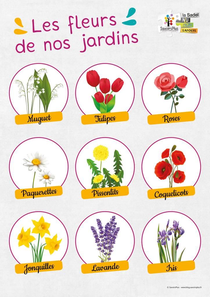 Fleurs des jardins_Savoirs plus
