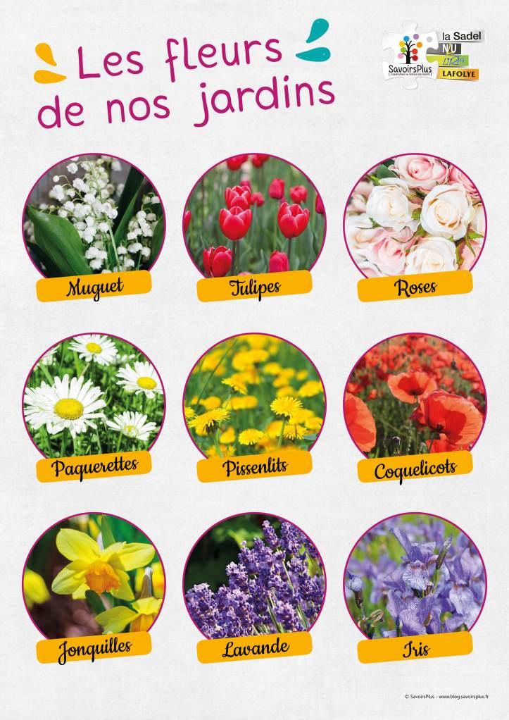 Fleurs des jardins_Savoirs plus2